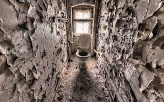 Отделка туалета плиткой своими руками