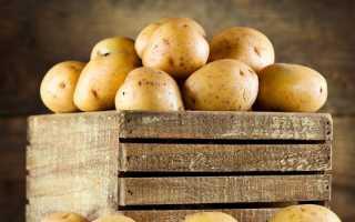 Как хранить картошку в квартире: где лучше хранить овощи дома