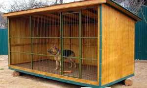 Размер вольера для собаки: как сделать своими руками