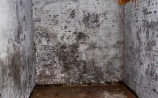 Как избавиться от влаги в подвале частного дома, обзор методов