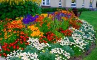 Как сделать Цветник у дома: виды дизайна на даче
