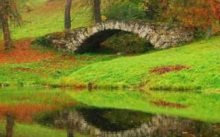Как укрепить бортик пруда или откоса – обзор методов и советы