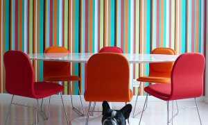 Чем и как оригинально покрасить стены дома своими руками