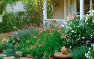Как украсить двор частного дома своими руками: топ-10 идей на фото