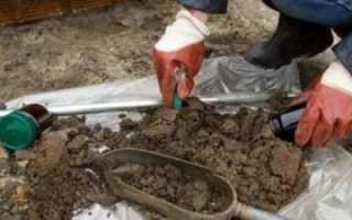 Проведение агрохимического анализа почвы – особенности, методика