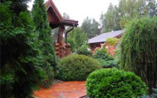 Как сделать ландшафтный дизайн своими руками на даче и частном доме