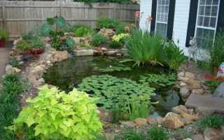 Как сделать водоем на даче своими руками без гидроизоляции и с ней
