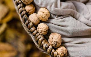 Как хранить грецкие орехи: очищенные и очищенные дома и в холодильнике