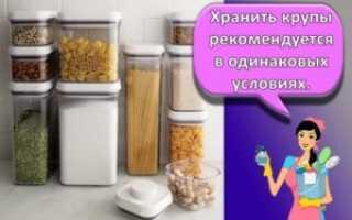 Как сохранить цуккини свежими дома, в квартире или в подвале